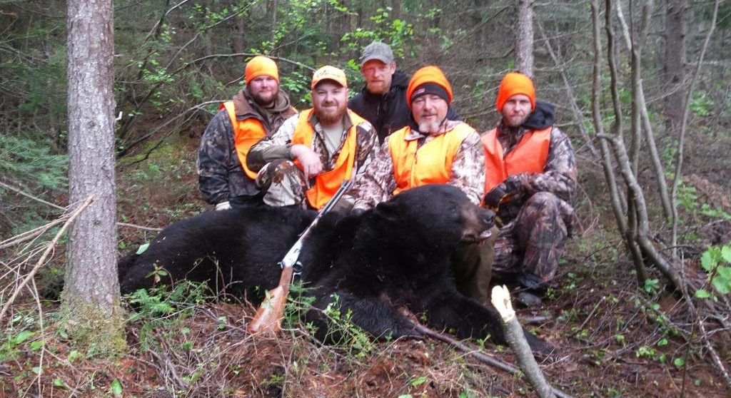 Saul Outfitters Bear Hunt